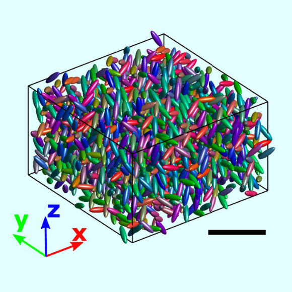 The computer provided a 3D reconstruction of a subset of the sample size with the value of red, green, and blue indicating the orientations of the particles.  Scale bar - 20 μm.  Image credit: Roller et al., Doi: 10.1073 / pnas.2018072118.