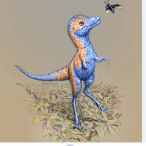 Canada, United States – The first infant dinosaur fossils were discovered at RCI