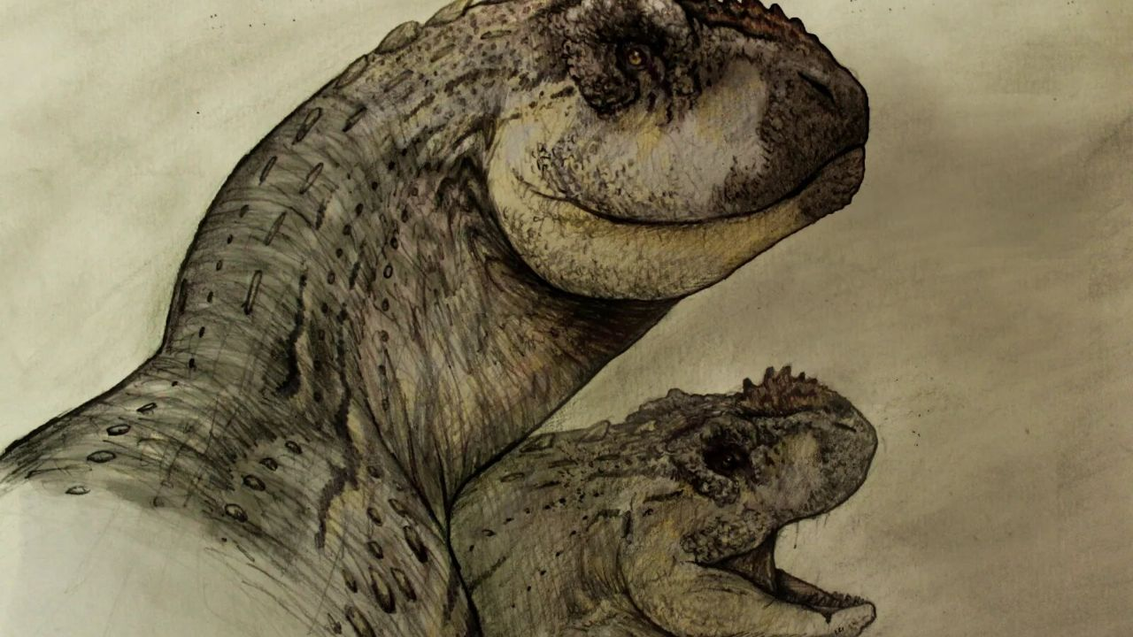 Discover a new species of dinosaur in Patagonia