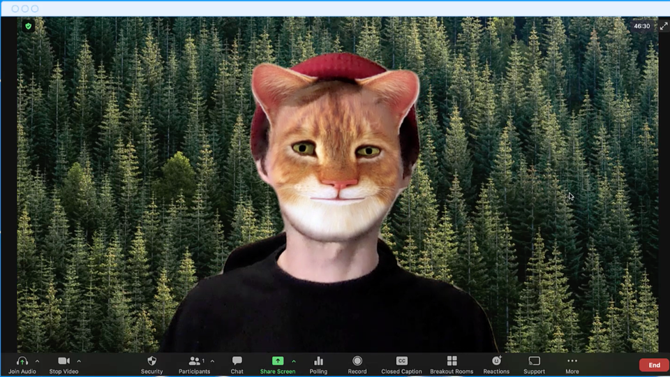 How to use the zoom filters so they don't appear like …