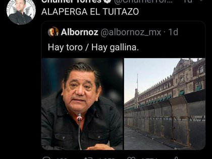 The YouTuber has consistently criticized the federal government's actions in the case of candidate Felix Salgado Macedonio (Photo: Twitter / @ChumelTorres)