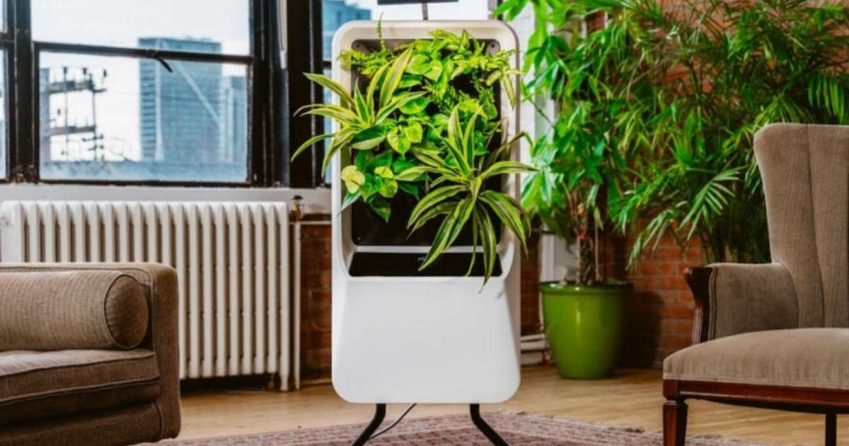 Breathe: a portable air purifier that works with plants
