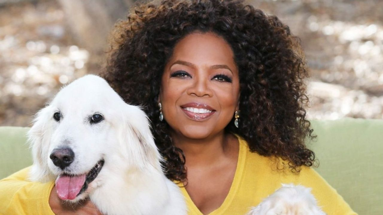 Who is really Oprah Winfrey?  African American woman and pop culture icon
