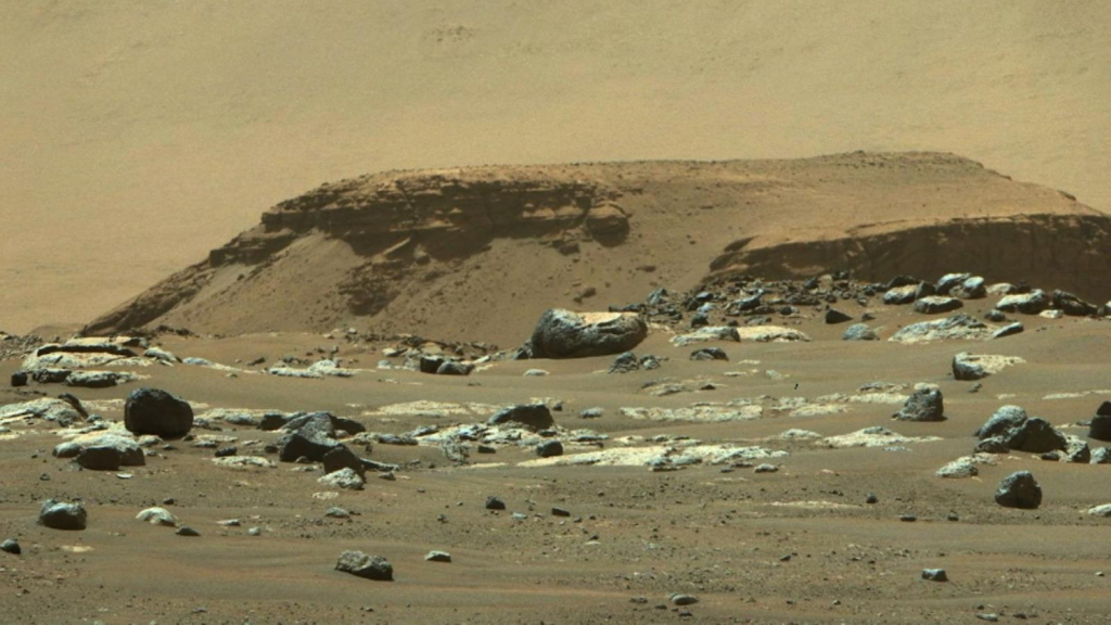 Follow missions on Mars directly with this tool