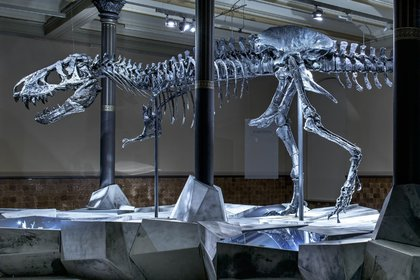 """It is being introduced in Germany """"Tristan Otto"""" -Complete Tyrannosaurus Rex so far (Image: Museo für Naturkunde)"""