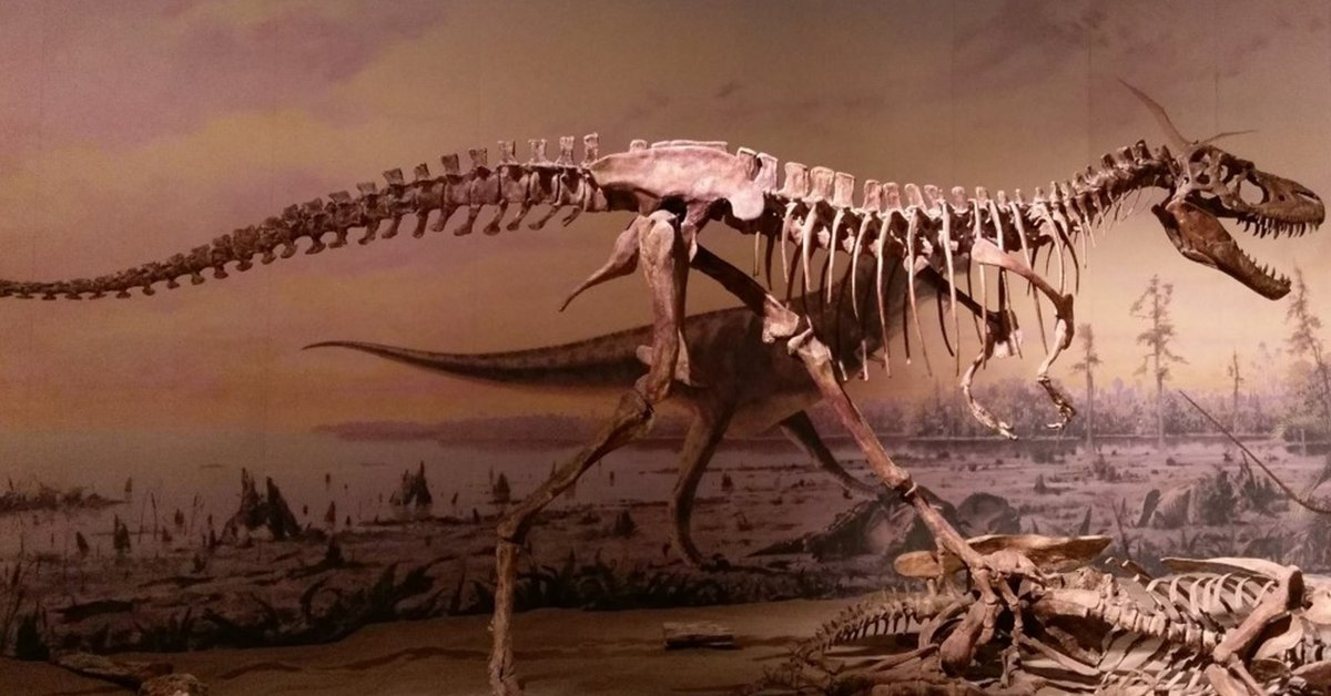 Paleontologists in North America estimate that the Earth has hosted 2.5 billion Tyrannosaurus rex in its history