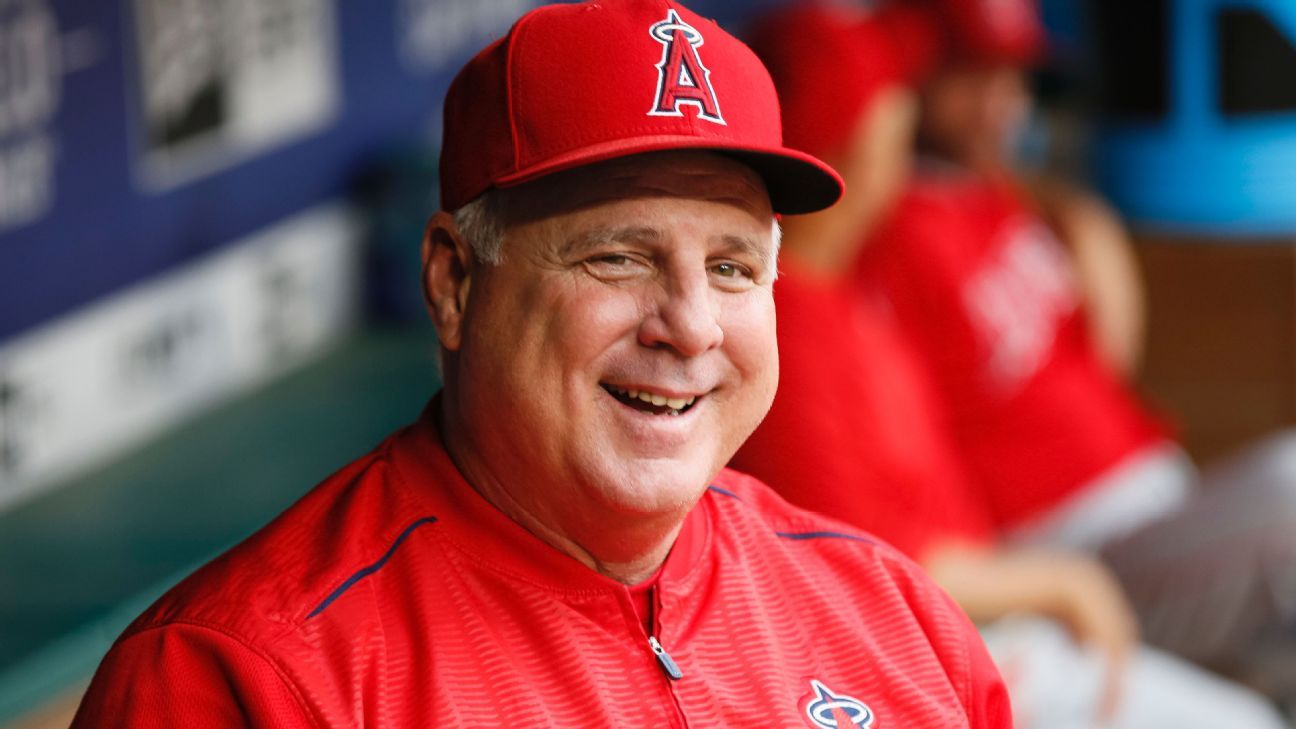 Mike Cuschia will be the director of the United States in the pre-Olympic baseball tournament