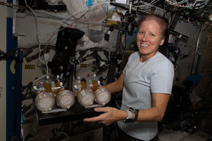 Image provided by NASA showing US astronaut Shannon Walker, from the so-called SpaceX crew