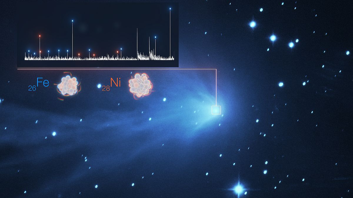 The discovery of an unexpected comet surprises astronomers