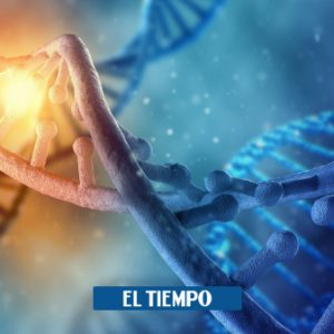 They obtained the complete genome map of SARS-CoV-2 – Science – Life