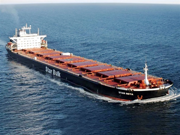 Wholesale shipping companies listed in the US completed their 10th year with red numbers in 2020