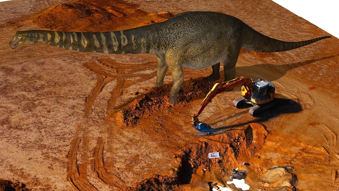 Discover the remains of the largest dinosaur in Australia and one of the largest dinosaurs in the world