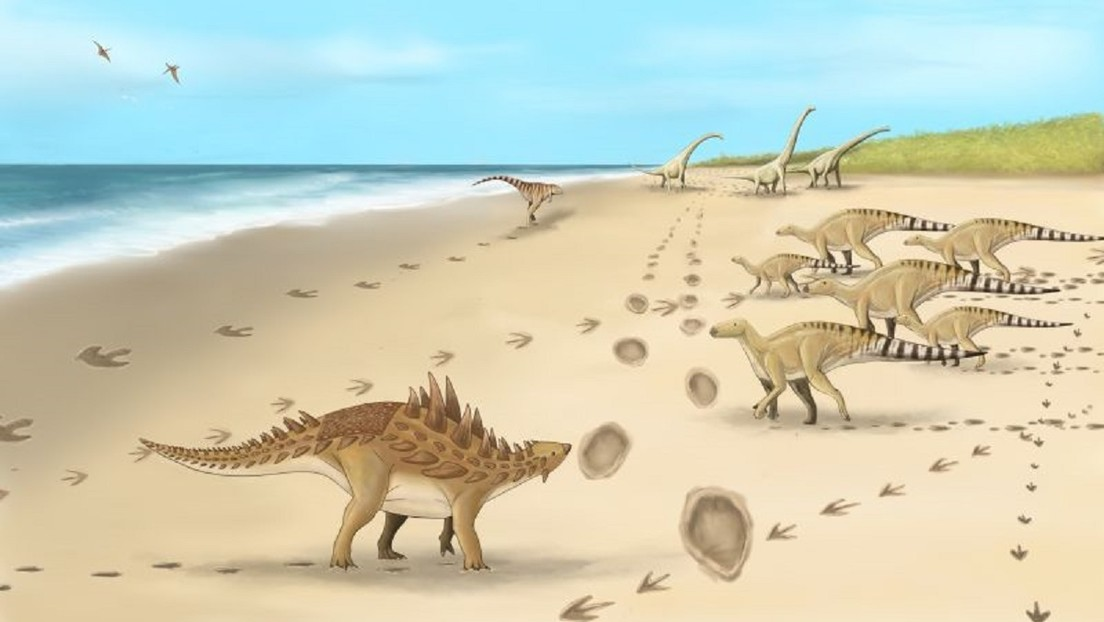 And they reveal the traces of the last dinosaurs that walked in the UK 110 million years ago