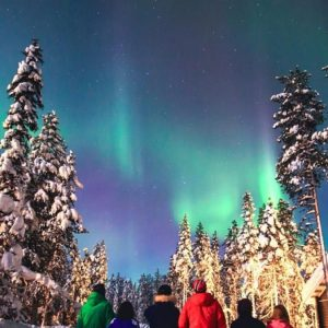 Finland is looking for foreign workers: the most popular jobs