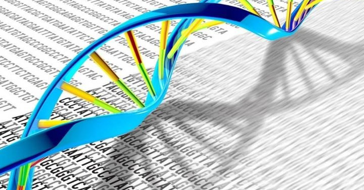 A group of scientists announced that for the first time they have sequenced the entire human genome