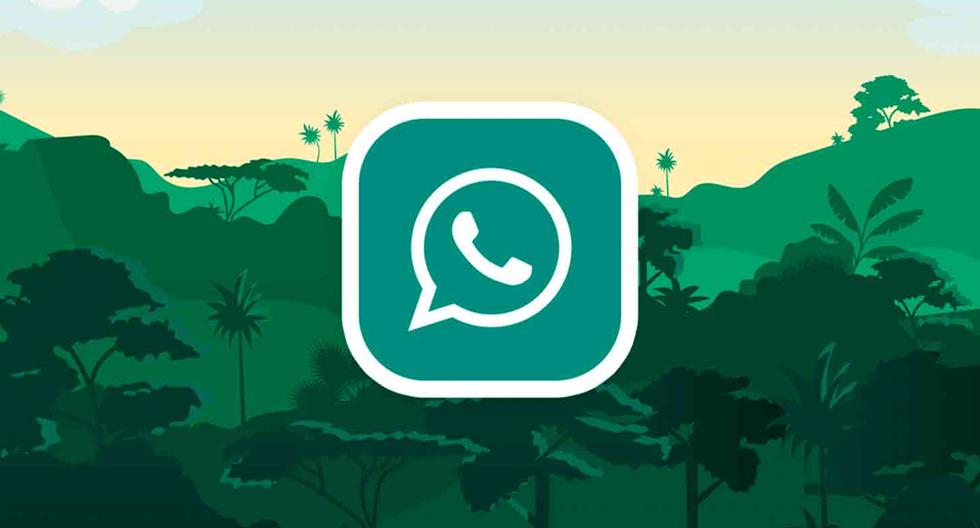 WhatsApp |  Apps will leave you without using your chats |  chats |  Applications |  Smartphone |  Mobile phones |  trick |  Tutorial |  United States |  Spain |  Mexico |  NNDA |  NNNI |  SPORTS-PLAY