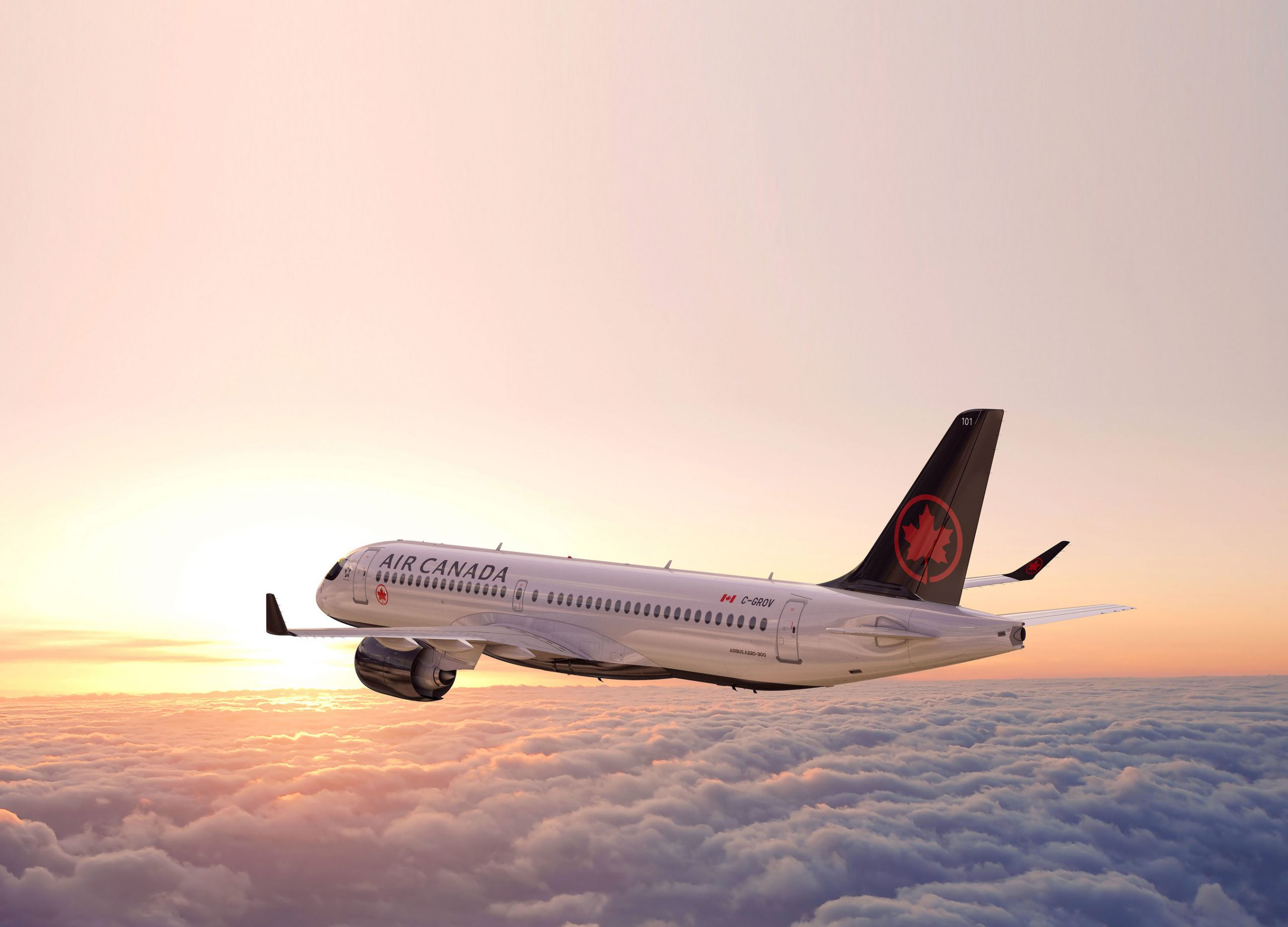 Air Canada is reactivating all its routes to the US