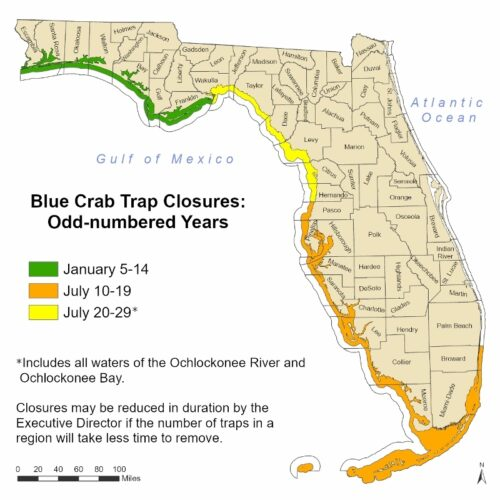 Close the blue crab trap in southwest Florida |  News, Games, Jobs