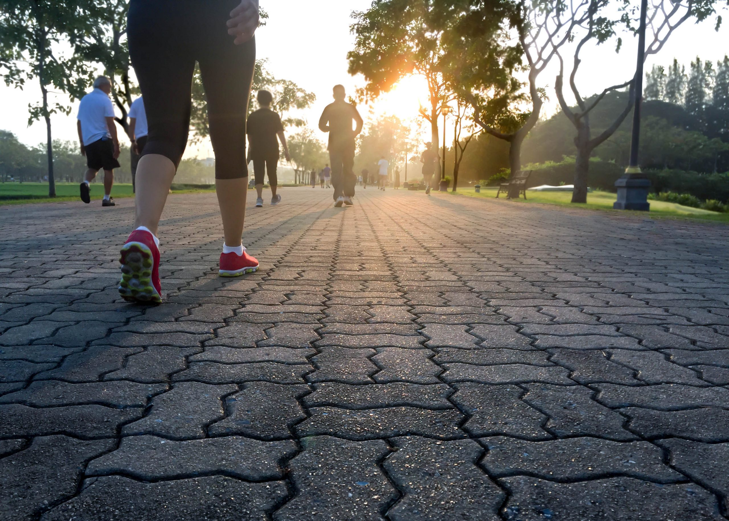 How fitness protects you from illness – even COVID