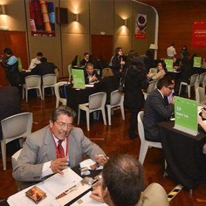 What are Pacific Alliance business meetings?