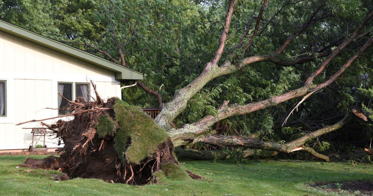 Storms cause power outages and road closures in the United States
