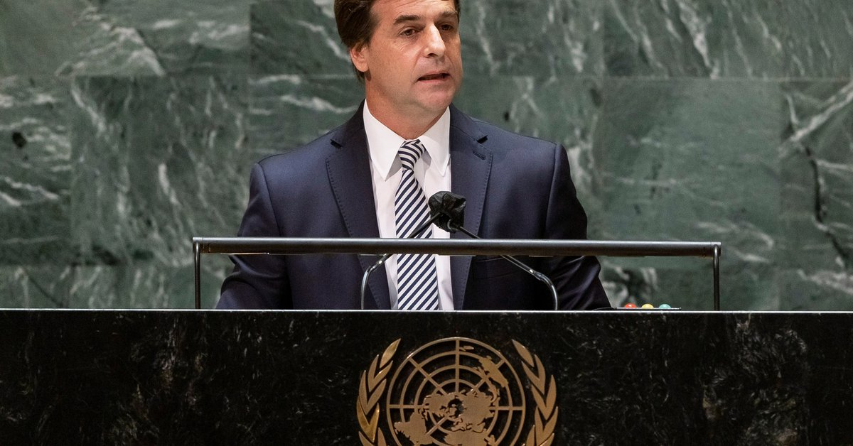 The accessory on the shirt Luis Lacalle Pou used during his speech at the United Nations as a gesture to the Uruguayan countryside