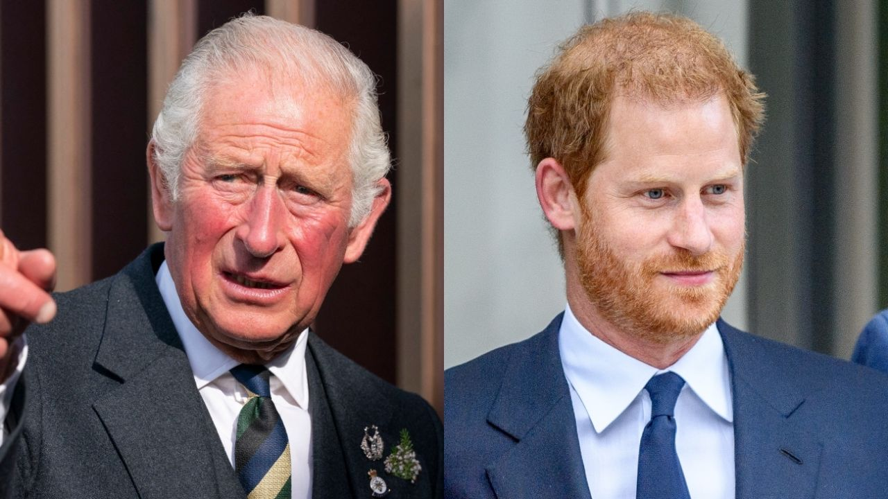 """Prince Charles plans to """"compete"""" with his son Harry with the TV channel"""