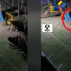 Chilling: This is how a ghost terrorizes the neighbors in a municipal park |  Chronicle