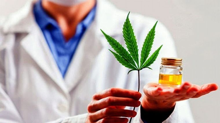 Cordoba: The deadline for regulating medical cannabis has expired