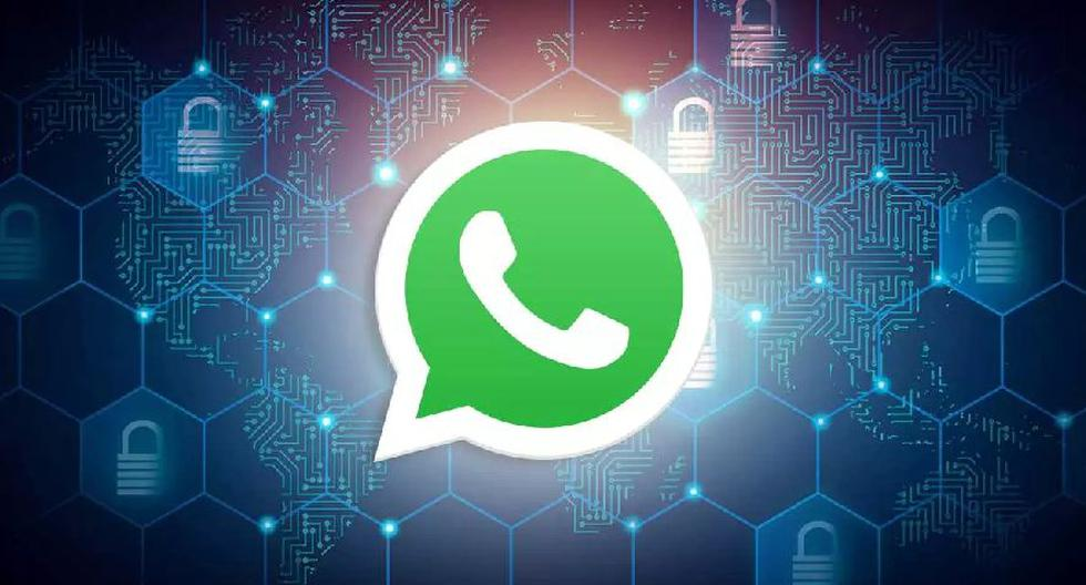WhatsApp    The trick to turn on end-to-end encryption for backups    Android    iOS    iPhone    Apple    Applications    Applications    Smartphone    Mobile phones    viral    nda    nnni    SPORTS-PLAY