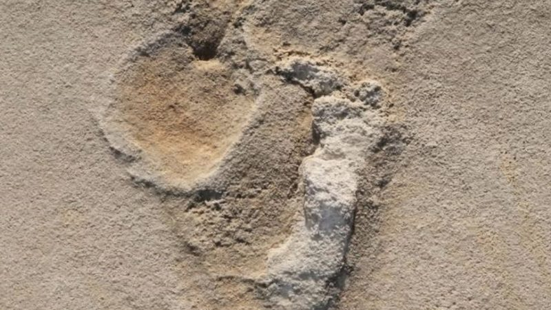Historic discovery in Greece: they found human footprints 6 million years old
